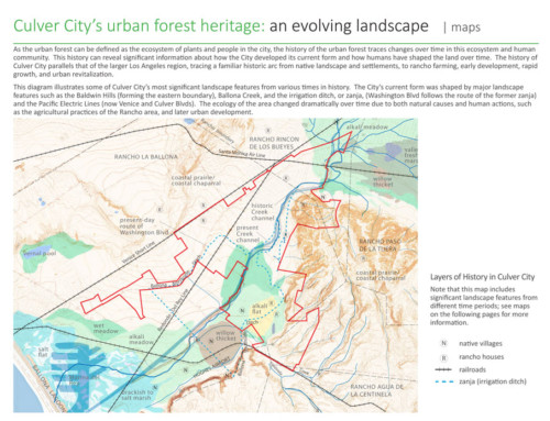 Culver City Urban Forest Master Plan