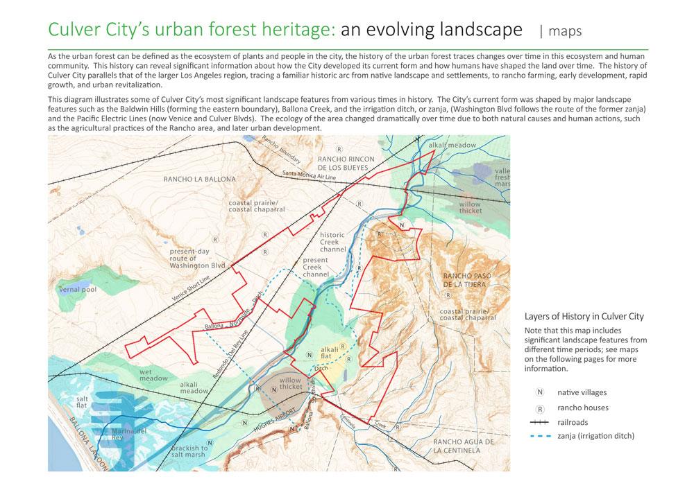 Culver City Urban Forest Master Plan