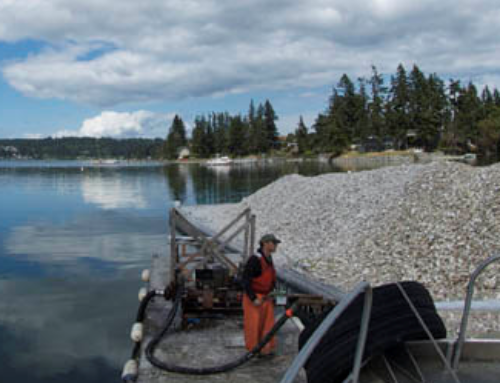 """Restoring the Hyporheic Zone of one of Seattle's Important Salmon-Bearing Waterways"""