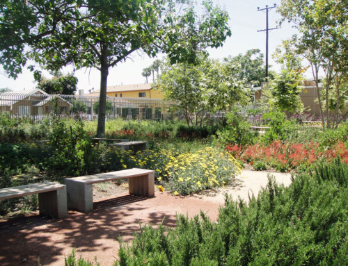 Freemont Wellness Center and Community Garden