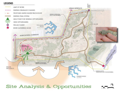 Hanson Property Habitat Restoration & Enhancement Plan